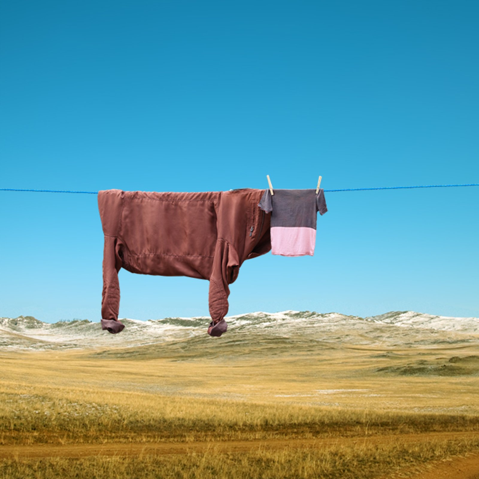 Helga Stentzel household surrealism clothes resembling cow