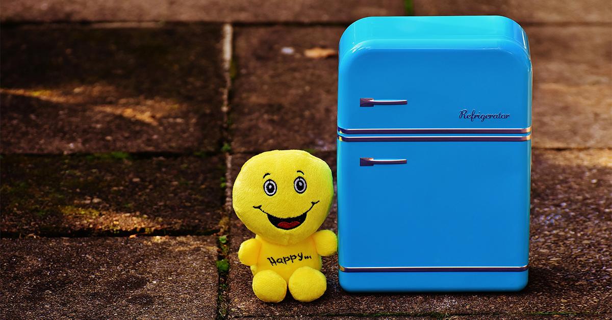 jouet mou et mini réfrigérateur