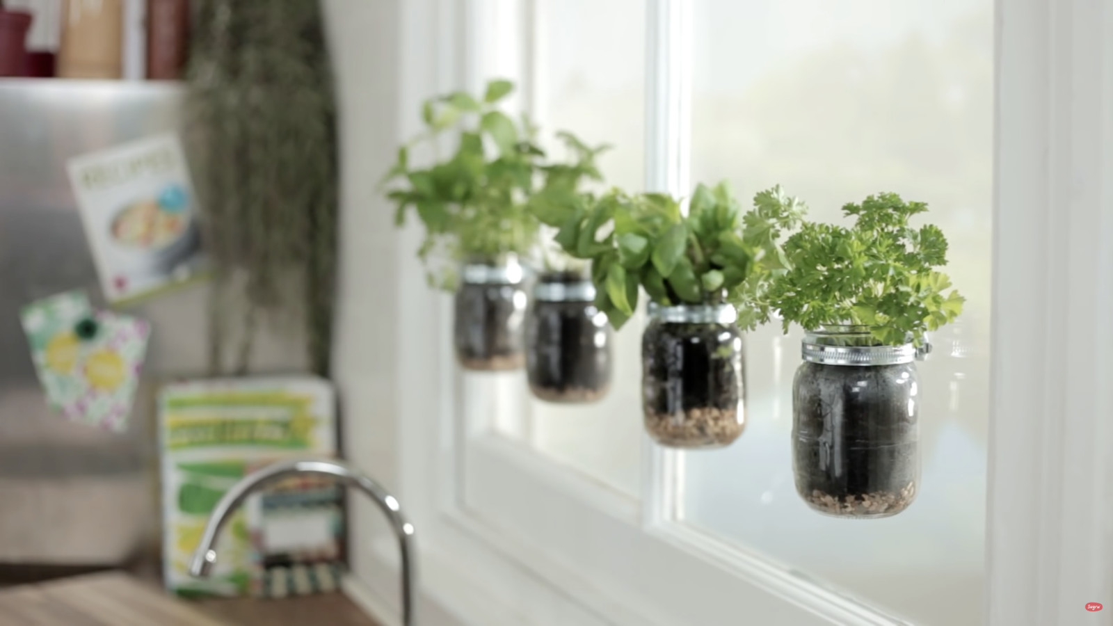 Herb Garden To Grow Culinary Herbs